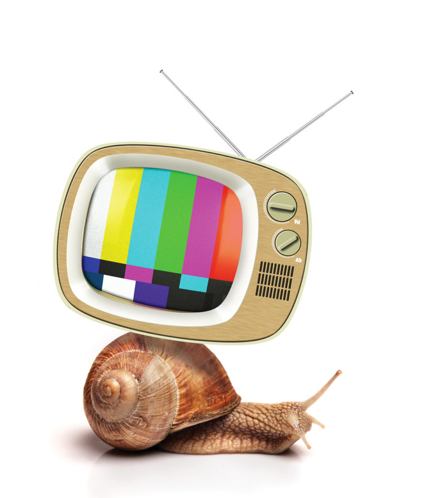 tv and snail