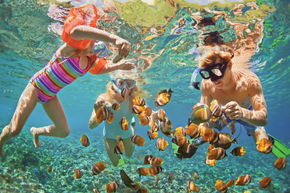 Family snorkeling in tropical waters.
